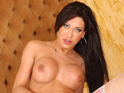 Busty Tranny Pamela Showing Off screecher Tits